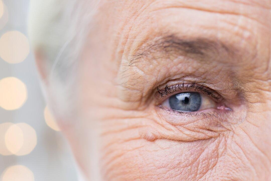 vision rehab