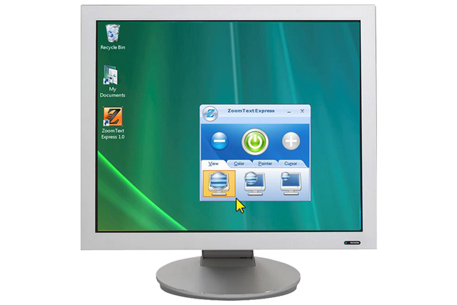 low vision software