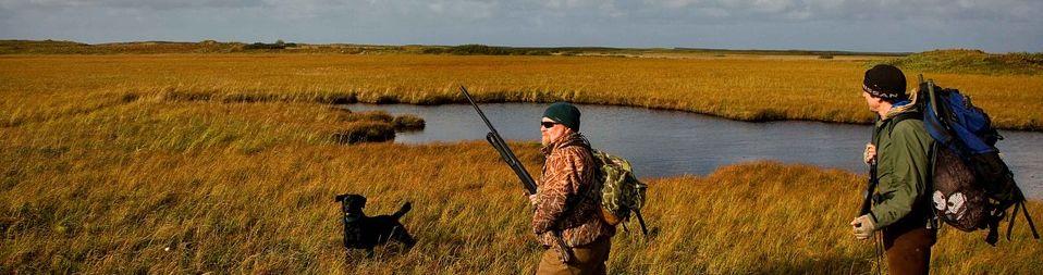hunting 960 253