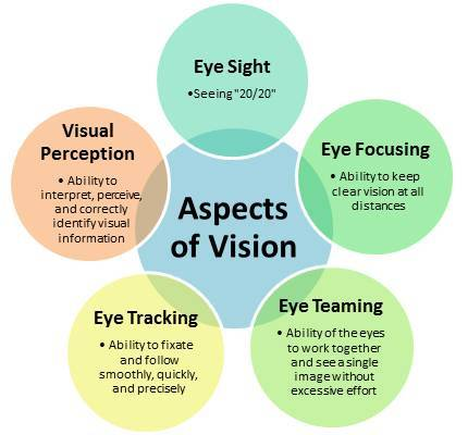 Aspects_of_vision