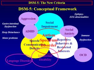 DSM 5 Autism