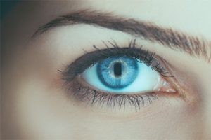 services contact lenses fitting Sidney, BC