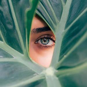 Dry Eyes, Read +