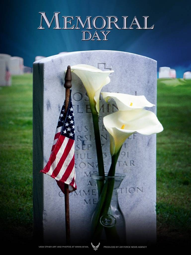 Memorial Day 2015 Images 53