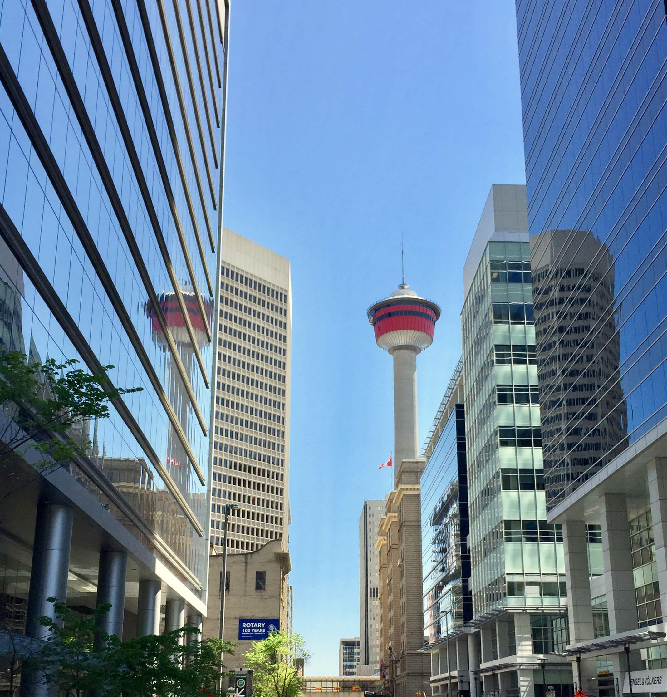 Calgary Foresight
