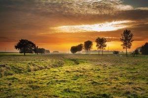 Sunset, Vision Insurance