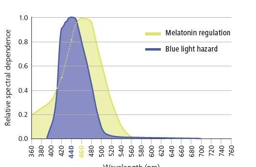 zeiss duravision blueprotect blue light blocking glasses in Laguna Beach