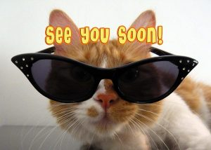 See you soon cat sunglasses