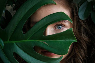 eyes behind the leaf v2.jpg